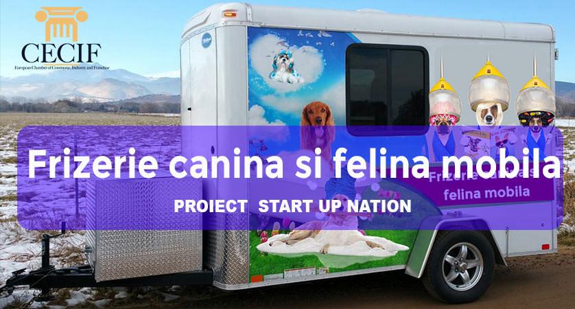 Frizerie canina si felina mobila proiect