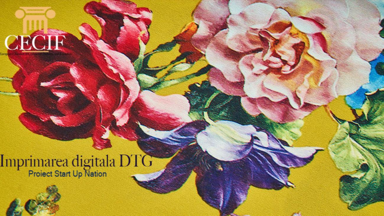 Print Textil Imprimarea digitala DTG