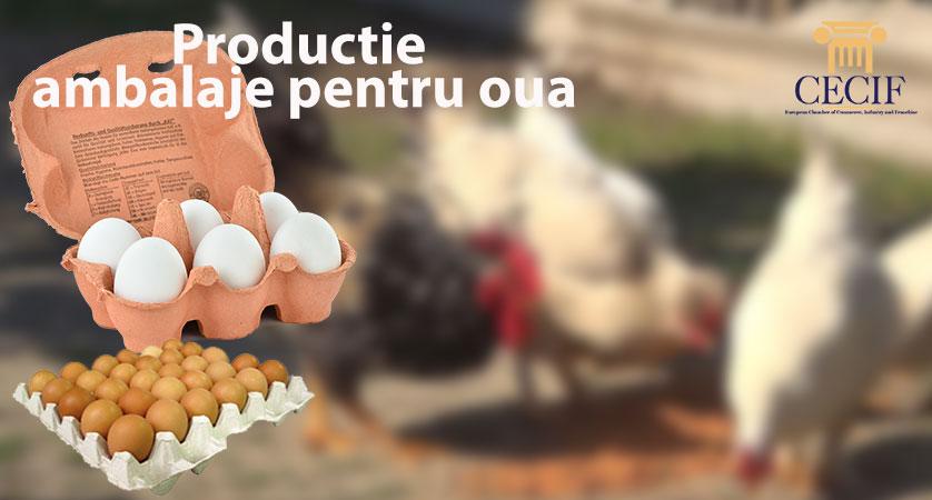 Productie ambalaje pentru oua