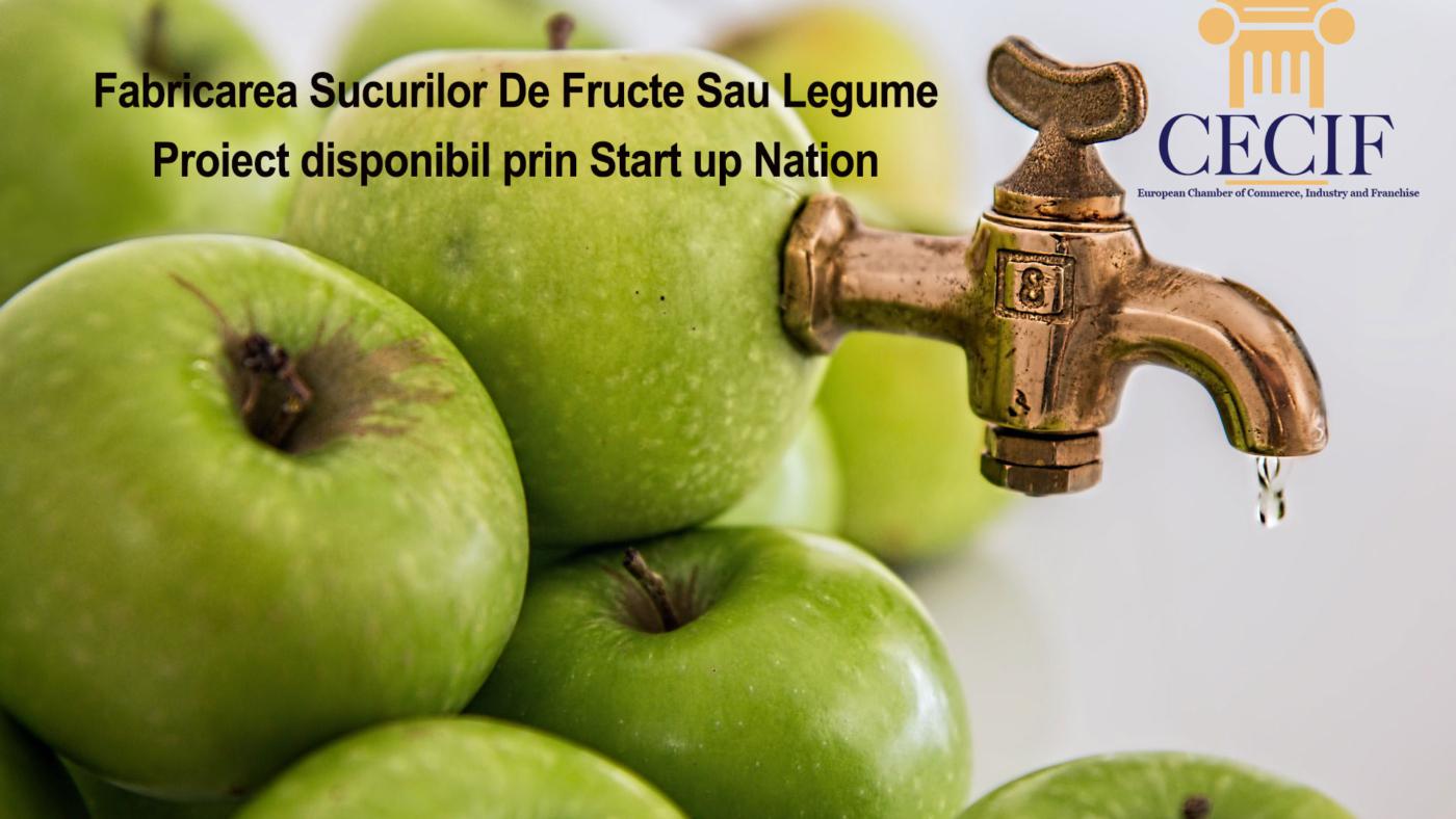 Fabricarea Sucurilor De Fructe Sau Legume