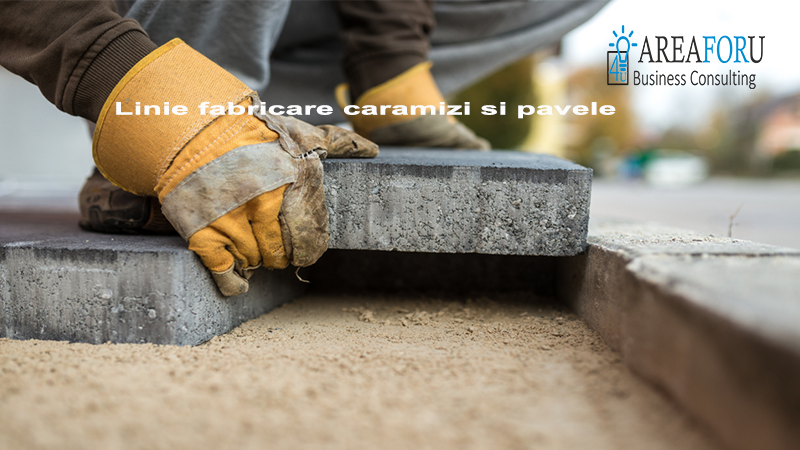 Linie fabricare caramizi si pavele – Start Up Nation